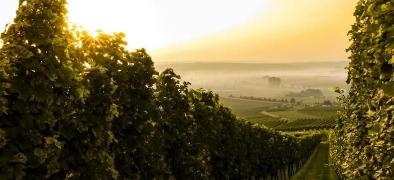Vinmark Italien
